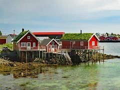 Norwegen - Lofoten (www.nbfotos.de) Tags: norwegen norge norway lofoten