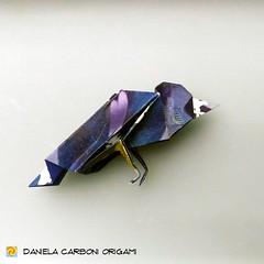 """Origami Challenge 192/365 """"Corvo"""" Modello del giorno 03/11/2018 Modello creato oggi. -------------------------------------------- """"Crow"""" Model of the day 03/11/2018 Model created today.  #origami #cartapiegata #paperfolding #papiroflexia  #paper #paperart (Nocciola_) Tags: crow origamicdo2018 paperart cartapiegata corvo createdandfolded papiroflexia paperfolding originaldesign danielacarboniorigami paper origami"""