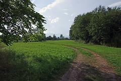 Maastik Soomaal (Jaan Keinaste) Tags: pentax k3 pentaxk3 eesti estonia viljandimaa soomaa tipuküla maastik landscape
