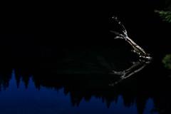Darkness (ramvogel) Tags: sony a6300 sigma30mmf14 sigma switzerland lake water crestasee night reflection