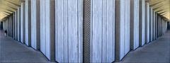 wandlanger langwanderer (Bernergieu) Tags: lausanne switzerland epfl artlab architektur architecture holz bois panorama gris grau wood