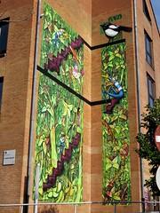 David Selor / Laeken - 12 oct 2018 (Ferdinand 'Ferre' Feys) Tags: bxl brussels bruxelles brussel belgium belgique belgië streetart artdelarue graffitiart graffiti graff urbanart urbanarte arteurbano ferdinandfeys davidselor bestof2018be