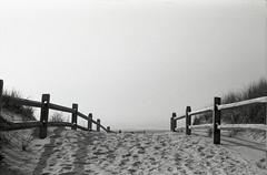 foggy (bpwilby) Tags: 35mm 400speed agfa agfaapx400 capemaycounty film nikon nikonf4 atlanticcoast bw beach blackandwhite negative newjersey nj ocean shore stoneharbor
