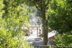 Miho Shrine (takashi_matsumura) Tags: miho shrine mihonoseki matsue shimane japan nikon d5300 美保神社 美保関 松江 sigma 1750mm f28 ex dc os hsm ngc