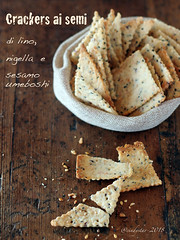 crackers ai semi (cindystarblog) Tags: crackers pane bread mtc mtchallenge semi seed