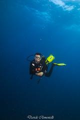 IMG_1477 (davide.clementelli) Tags: diving dive dives padi immersione immersioni ampportofino portofino liguria friends amici underwater underwaterlife sottacqua