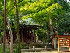 A little Shrine outside of Hikawa Shrine (Eshke04) Tags: shrine shintoist religious old traditional architecture hikawa saitama japan green forest