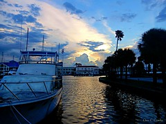 A Typical Florida Scene (Chris C. Crowley) Tags: atypicalfloridascene marina daytonabeachfl boat palmtrees river water reflectins buildings sunlight sunset clouds sky scenic
