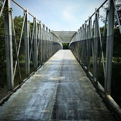 The Bridge. (Dynaries) Tags: bridge brug lelystad flevoland bos forrest tree bomen fietsen cycling eltonjohn lyrics foto fotografie photo photography 2018 outside historic sky nature green blue flora bright bike new air silhouette grass road park