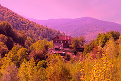 Ilıca ve Ahşap Ev (Talip Çetin) Tags: kastamonu pınarbaşı şelalesi orman ahşapev forest ilıcaköyü tree mountain sky wood hause landscape manzara sonbahar waterfall autumn yellow red leaves tarihi yerel konak historic mansion local architecture wooden house dağ küredağları milliparkı national park ilgarini mağarası valla kanyonu zarı çayı horma devrekani turquie türkei turquía トルコ turchia турция 土耳其 تركيا anatolia turkey टर्की индейка індичка τουρκία 터키 türkiye anatolian asya avrupa asia european