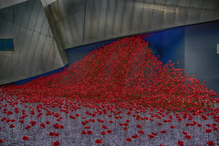 Weeping Window (LeBlanc_Nigel) Tags: weepingwindow ceramic display art poppies remembrance imperialwarmuseum red color colour