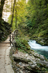 Soteska Vintgar (cedant1) Tags: slovenia slovénie triglav hike forest water longexposure creamy path vintgar gorge gorje