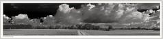 2018-09-25_08-21-33 (fredericfromage) Tags: sw bw monochrom panorama himmel wilken wetter felder bäume natur münsterland