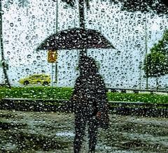 difícil de ver (lucia yunes) Tags: chuva guardachuva diadechuva rain rainday streetphoto streetshot streetphotographie street streetphotography motozplay luciayunes streetlife lifestyle cenaderua fotografiaderua fotoderua