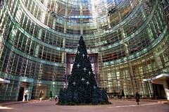 Holiday 2016, 12.03.16 (gigi_nyc) Tags: nyc newyorkcity holiday holiday2016 731lexingtonavenue bloombergtower christmas christmastree christmas2016