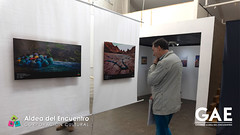 expo_colorearte-06