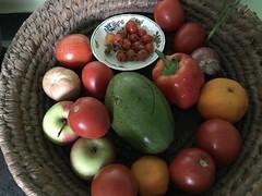 Tiny tomatoes (prondis_in_kenya) Tags: kenya nairobi colddryseason tomato fruit vegetable basket apple avocado orange