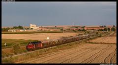 Cerealero en Babilafuente (javier-lopez) Tags: ffcc railway train tren trenes adif comsa takargo mercancías cerealero cereal 6000 335 euro4000 euro 4000 uagpps ptt vtg babilafuente vilarformoso aveiro pueblo 11092018