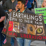Midwest March for Animals Chicago Illinois 10-14-18 4630 thumbnail