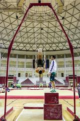 ginastica_doha_21out2018_treinomasc_abelardomendesjr-59 (Ministerio do Esporte) Tags: doha mundialdeginásticaartística qatar ginásticaartística