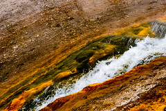 Priismatic - Yellowstone National Park - Fall 2018-62.jpg (jbernstein899) Tags: textures seismic colorful gold water patterns yelow grandprismatic yellowstonenationalpark geothermal orange wyoming