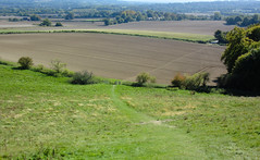 NDW - Part 5 (Terry Rayment) Tags: northdownsway nationaltrail hiking