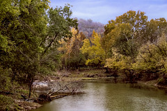 Brush Creek (Dailyville) Tags: autumn brushcreek creek stream sky leaves branches trees outdoors ohiofoothills dailyville ohio fall