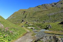 vue arrière (bulbocode909) Tags: valais suisse nendaz lagouille chemins ponts torrents eau paysages chalets fleurs montagnes nature vert bleu rochers