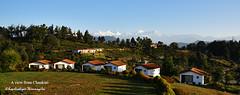 A view from Chaukori (Kapaliadiyar) Tags: kapaliadiyar chaukori pithoragarhdistrict himalayanpeaks uttarakhand nandadevi nandakot panchchuli kmvn kmvntrh