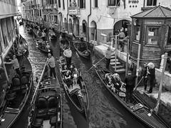 Gondola Traffic Jam, Venice, Italy (Angel Talansky) Tags: venecia venice italy gondola gondolatrafficjam trafficjam atasco streetphoto venicecity canal gondoleros gondolas travel holyday gondolier gondoliers traffic venezia