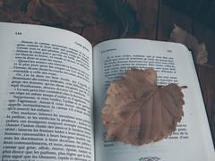 Les caresses (Delphine Wild) Tags: livre book maupassant automne feuilles contes grivois écrivain extrait autumn naturemorte stilllife