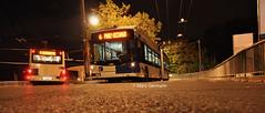 Trolleybus Hess BGT-N2D n°866 en service sur la ligne 6. © Marc Germann (Marc Germann) Tags: trolleybus naw bt25 remorques convois transportspublics transn hess articulé easyjet lausanne hockey club lhc fbw nuit musée transport mercedescitarobenz nawhesssiemens articulation autobus perches par brise routes bus tl transports publics lausannois neuchatelois man arbres retrobus