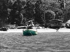 Shore of Haitian village (procapturellc) Tags: labadee caribbean atlanticocean boat haitianchild splashofcolor blackandwhite shore ocean haiti