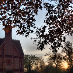 Foxhill House (a.pierre4840) Tags: olympus omd em10 micro43 cmount schneider kreuznach xenon 25mm f095 bokeh autumn leaves reading berkshire england sunrise dof depthoffield architecture squareformat 11 trees