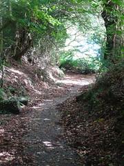 Autumn, Pilgrim's Way, Thornhill, Cwmbran 28 September 2018 (Cold War Warrior) Tags: autumn pilgrims cistercians cwmbran