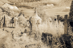 Residents of the Past II (James Etchells) Tags: arnos vale garden cemetery bristol city urban ir infrared sepia old antique photographic toning effect 18th century eighteenth nikon photography tomb tombs landscape landscapes sky clouds colour color architecture ancient experiment exploring past heritage natural world nature light south west england uk britain monument abandoned overgrown statue