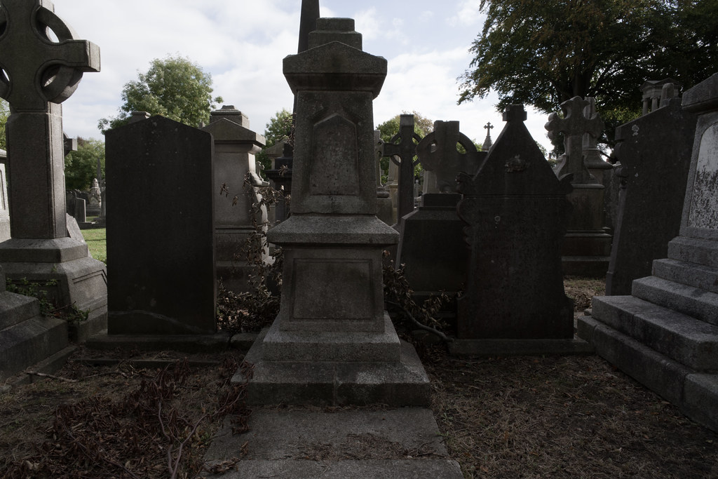 SEPTEMBER 2018 VISIT TO GLASNEVIN CEMETERY [FAULTY COPY]-144795