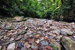 _Sochi_Uschele_Agura_2009_07_28 (Бесплатный фотобанк) Tags: gorge krasnodarkrai nature river russia sochi stones агура краснодарскийкрай сочи камни природа река россия ущелье гора большойахун