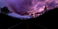 Night Rider (JarrodLopiccolo) Tags: california markleeville fall photograher trees pinetrees outdoor landscape outside night stars clouds purple road canon 5d