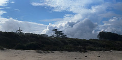Coastal Clouds (oz_lightning) Tags: australia landscape nature sky coast canon6d bermagui canonef100400mmf4556lisiiusm panorama beach newsouthwales aus