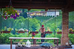 IMG_5288-2.jpg (ChodHound) Tags: francoconterno barolo italy castiglionefalletto piemonte it