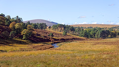 Among the Wicklow Hills (1) (John_ILCA-68) Tags: river landscape wicklow 16105mm ilca68 sony ireland