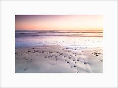 Plovan #5 (Guillaume et Anne) Tags: plage plovan beach france finistère bretagne penmarch baie audierne sunset coucherdesoleil filtre filters leefilters lee canon 6d 24105f4lis 24105 24105f4 big stopper gnd09 gnd06 poselongue longexposure