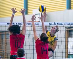 181014_VBTD1-Visp_190 (HESCphoto) Tags: vbtherwil volleyball damen saison1819 99ersporthalle nlb vbcvisp therwil