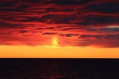 October fire (explored) (ossington) Tags: canada sunrise scarborough