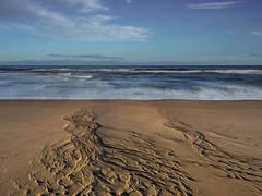 Beach (burnsmeisterj) Tags: olympus omd em1 beach stcyrus sea clouds movement water