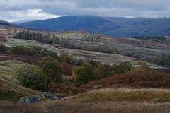 Loch Tay - Ben Lawers