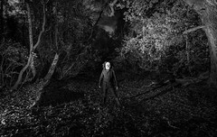 The Creature Of Church Wood (Rob Pitt) Tags: sony a7rii samyang 14mm f28 rivacrevalley night scary haloween wirral cheshire lightpainting blackwhite monography