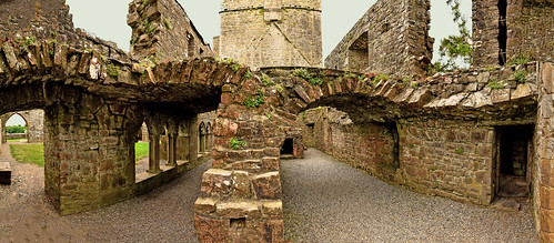 Irlande - Bective Abbey