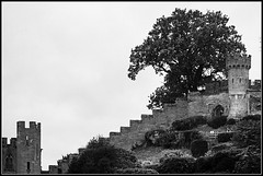 Wall (Jason 87030) Tags: walls defense battle hill tower watergate northern bw bbw black white noir blanc blackandwhite tree composition attraction visit warwick king weather dull dreary stone protection fortress uk england historic history